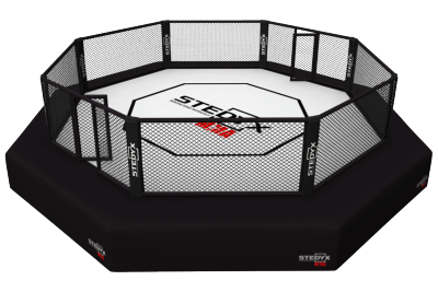 Octagon UFC rules